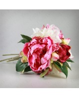 Bouquet de Peonia mixturado